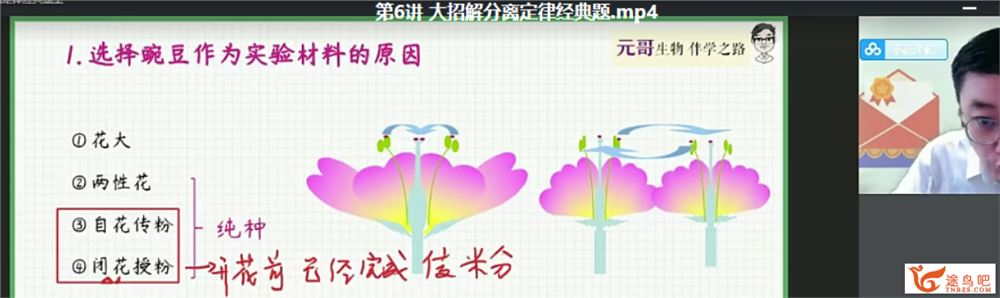 张元振 2022暑假 高一生物暑假尖端班(更新中)课程视频百度云下载